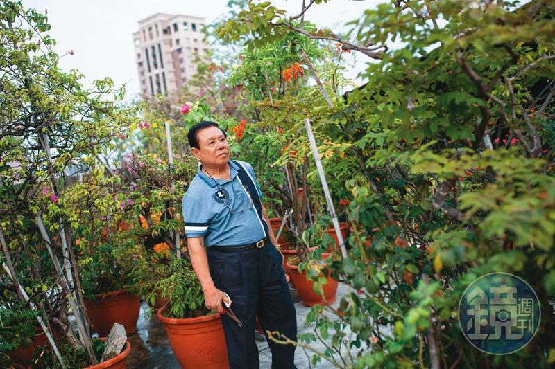 回到台灣的戴崇慶,2000年之後住在昔日開的西餐廳樓上,餐廳已成廢墟,而頂樓種滿花草。