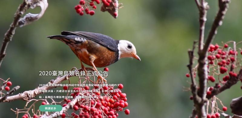 中華鳥會拒絕簽署政治承諾文件,遭國際鳥盟除名。(翻攝自中華民國野鳥學會官網)