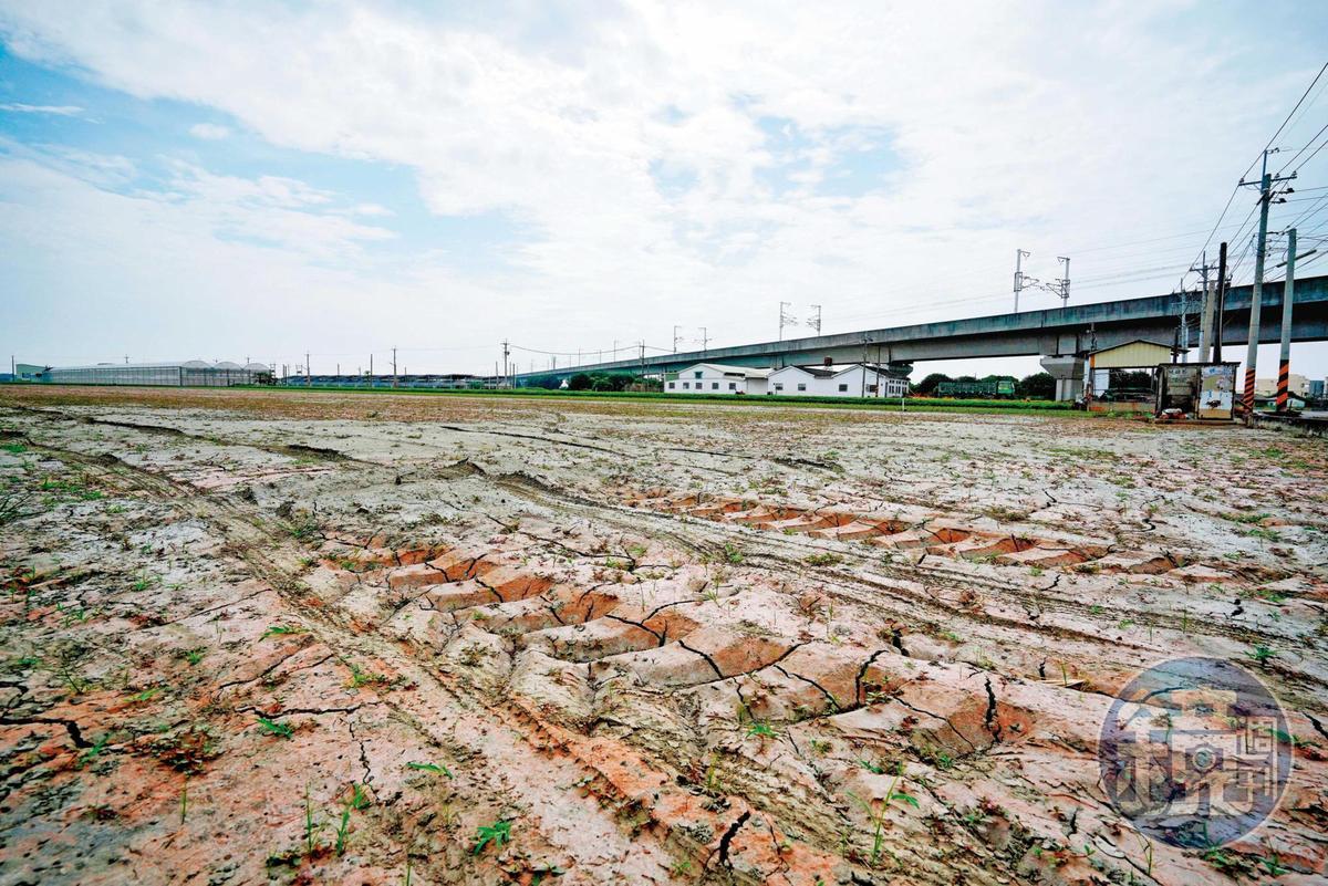 官方決定釋出2萬公頃的廢耕農地,讓廠商種電,台灣太陽能產業等於再注入一劑強心針。
