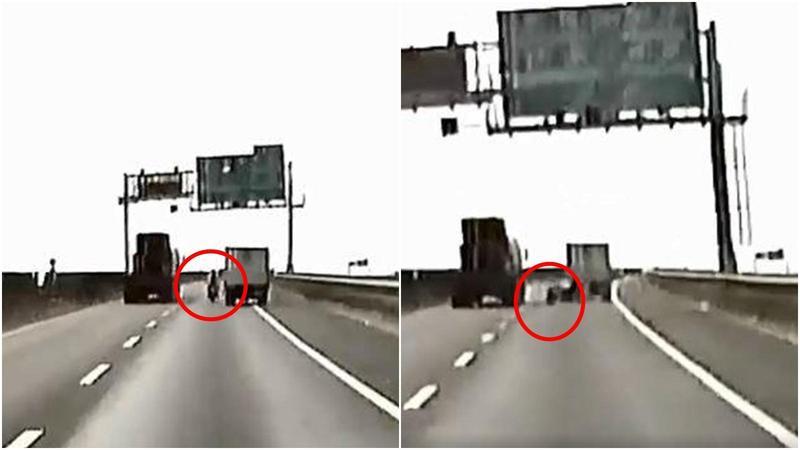 高雄水產行貨車在上月26日在快速道路上惡意逼車,導致重機騎士慘摔引發各界熱議。(翻攝自臉書社團「爆料公社」)