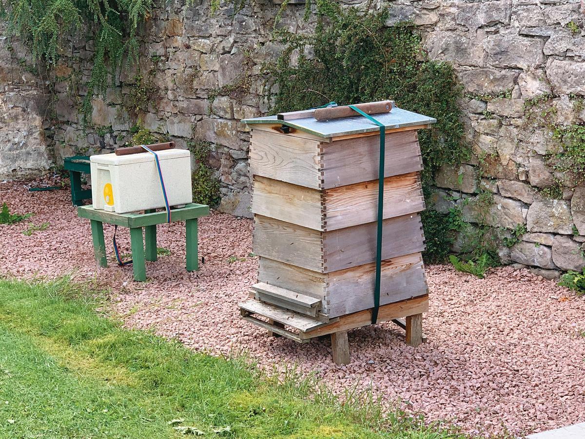 角落的養蜂小屋子,呈現另一種蘇格蘭鄉間風味。