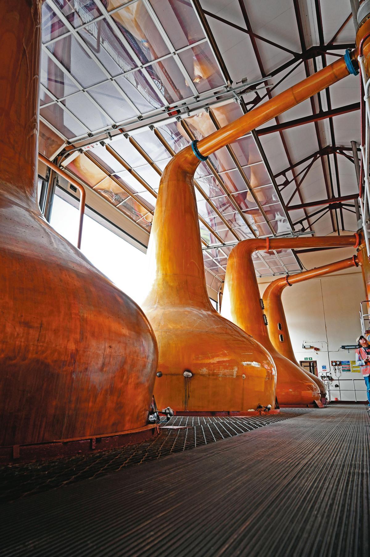皇家柏克萊酒廠有4支蒸餾器,林恩臂有著或多或少的上揚角度,造就了新酒酒體的優雅細緻。