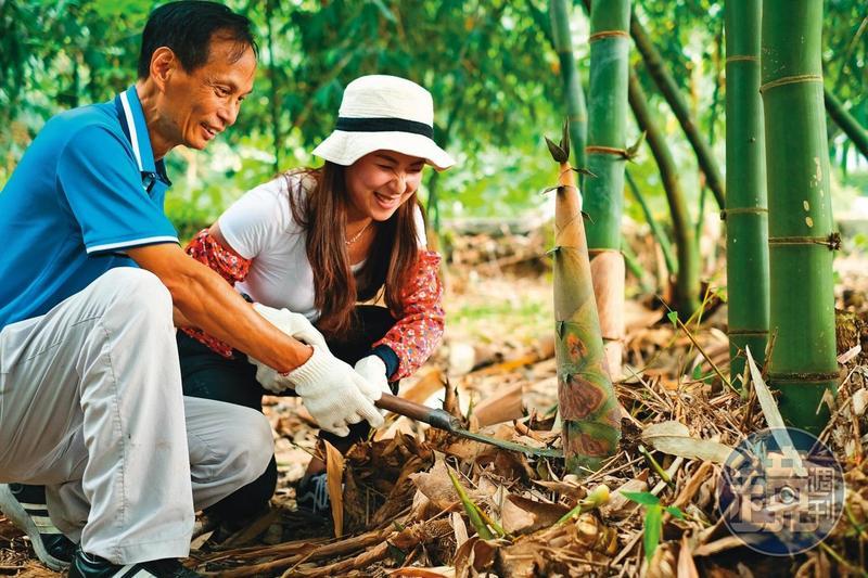 雲林古坑的「筍友部落」,有專人導覽帶遊客體驗過往採筍人的辛苦。