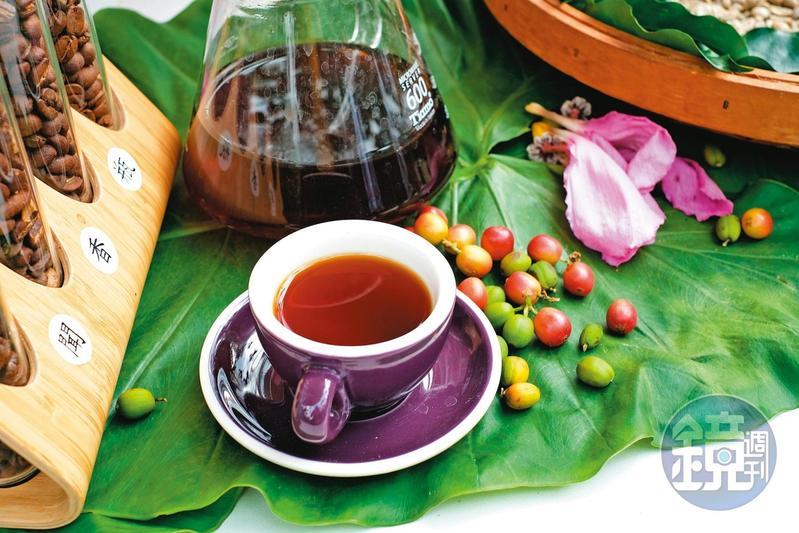 經過近10幾年的努力,成功打響雲林古坑咖啡的知名度。
