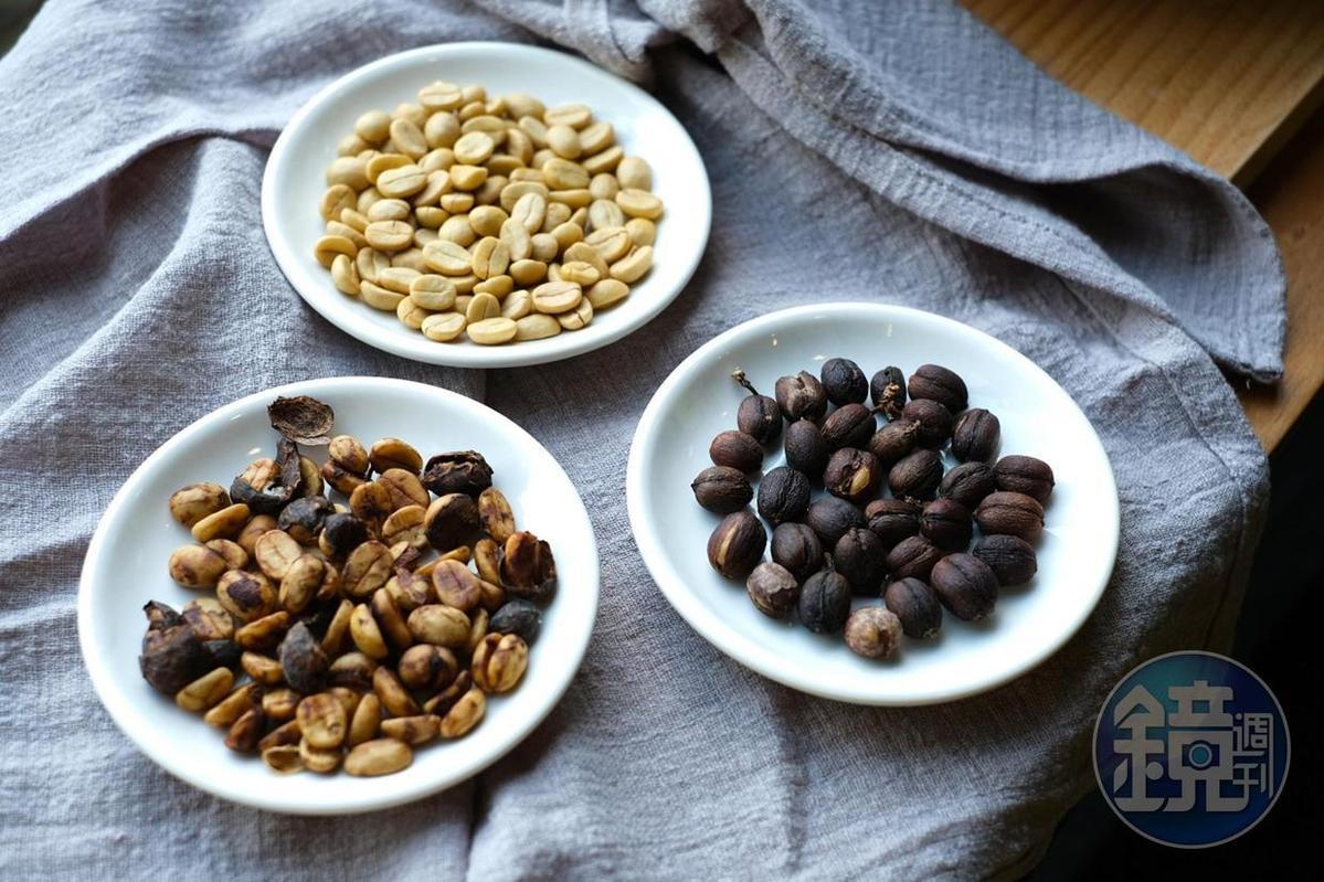 透過不同的生豆處理方法,展現咖啡多變風貌。