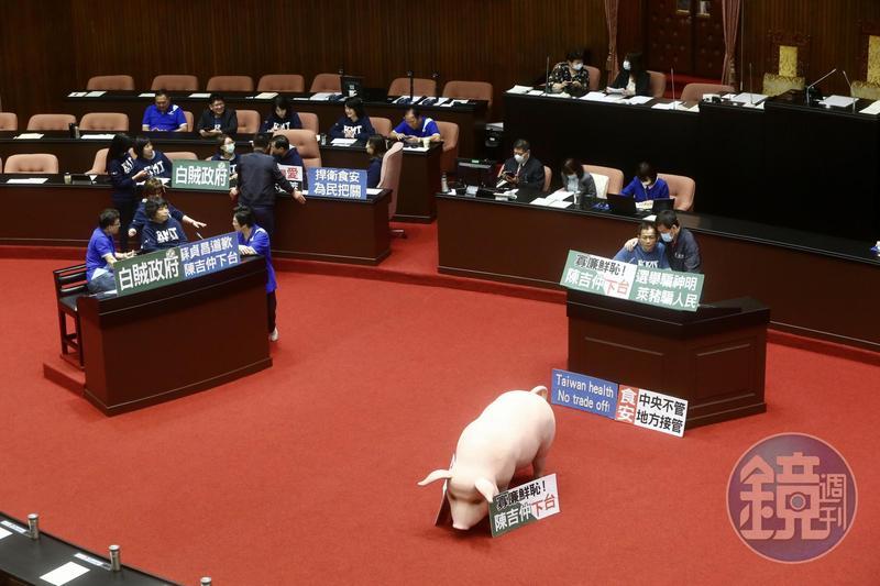國民黨立委以人肉、豬模型占據發言台及質詢台,杯葛院會召開。
