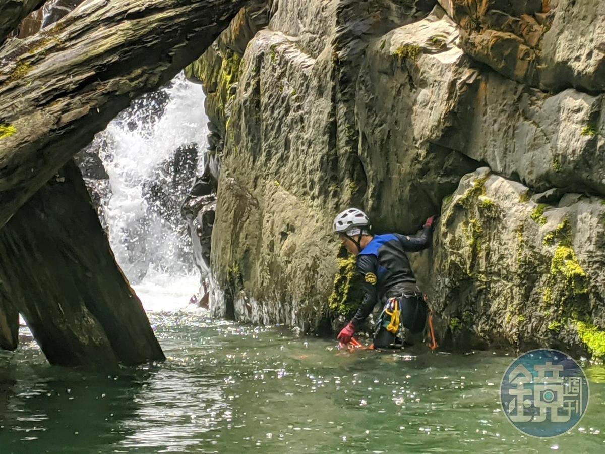 定點站立在寒冷的水中,克服寒冷溪水,令人驚喜。