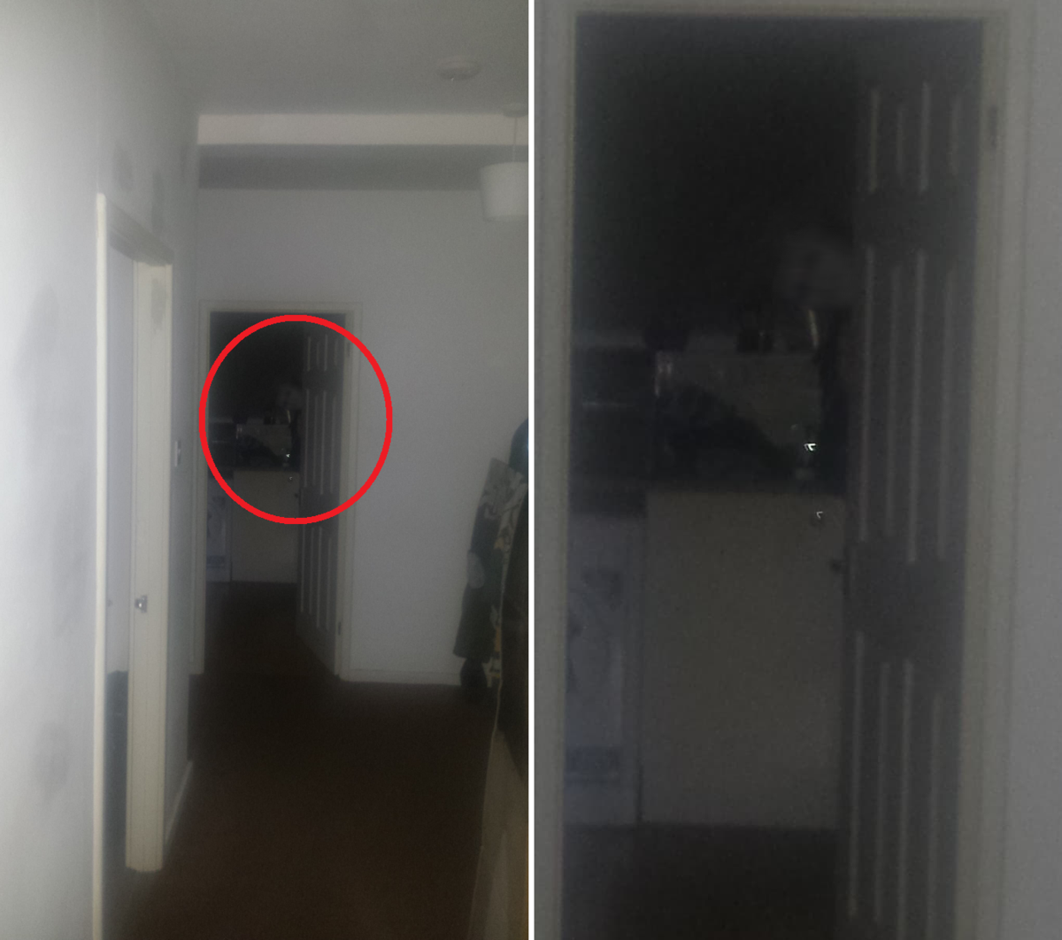 照片嚇到他當下決定搬家!(翻攝自Reddit/OopySpoopyMan)