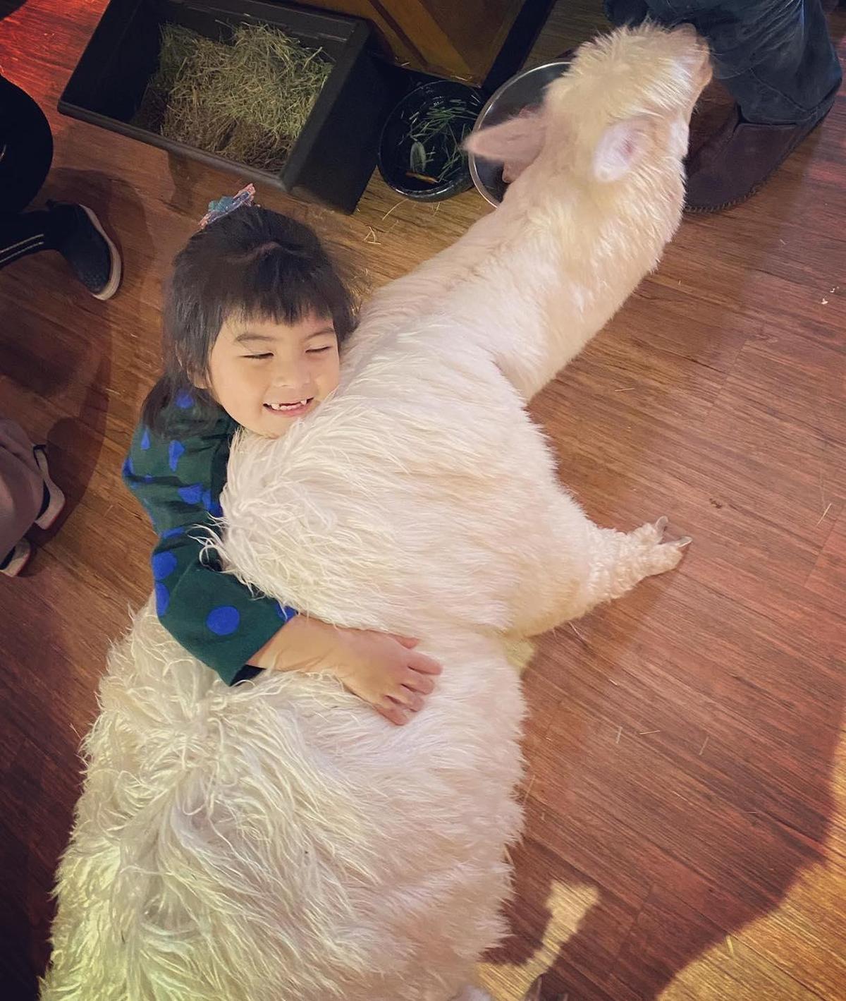 活潑的Bo妞抱住羊駝,露出幸福的笑容。(翻攝自賈靜雯臉書)
