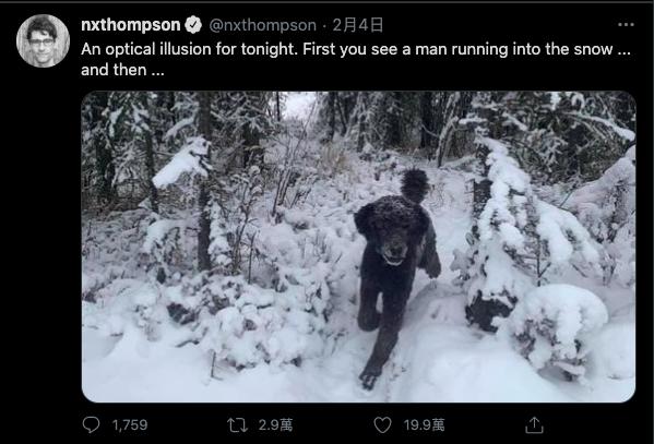 外媒記者尼古拉斯·湯普森(Nicholas Thompson)在推特上分享的照片中,每個人第一眼看到的「是人還是狗」?答案皆不同。(翻攝Nicholas Thompson推特)