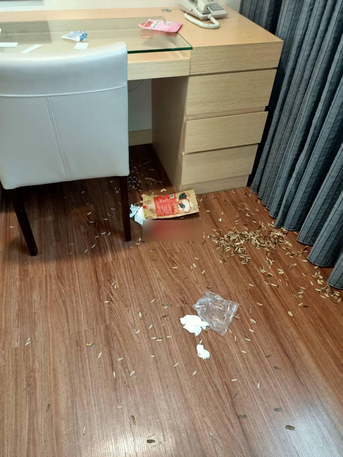 詐騙集團瓜子殼散落一地,房間弄得像垃圾場。